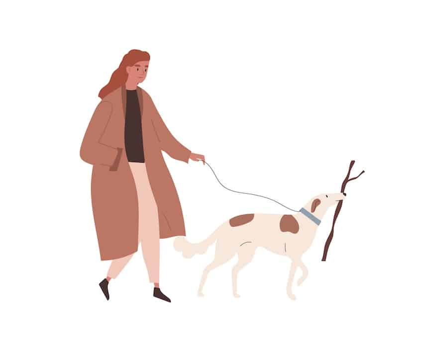 Graphic of lady walking outside with her dog